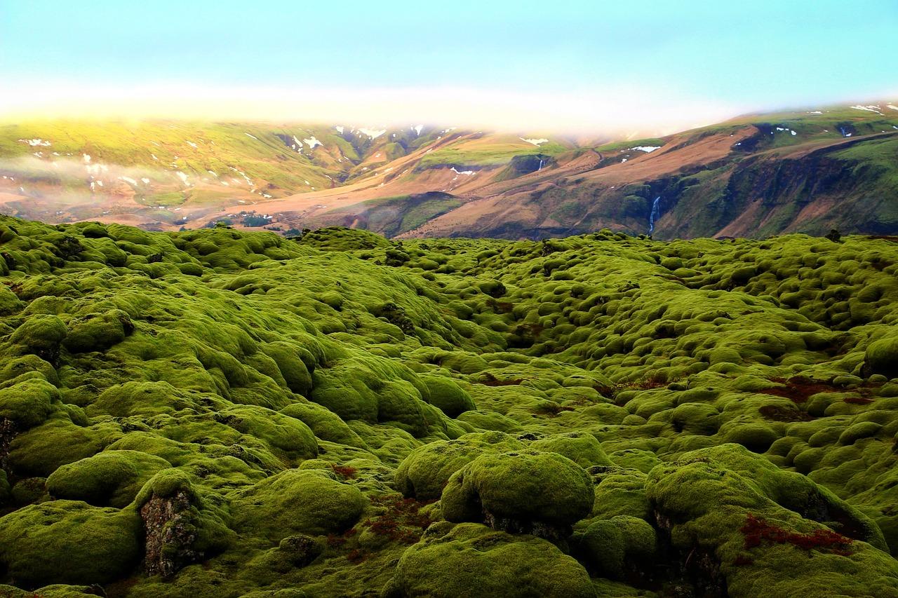 Ισλανδία - Ηφαιστειακό έδαφοσ