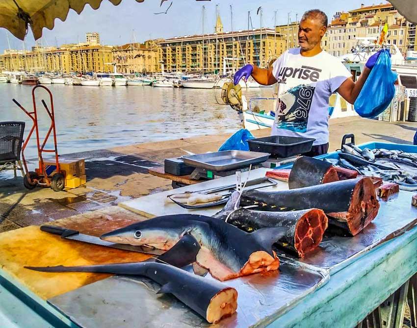 Καρχαρίες προς αγορά στην Μασσαλία